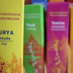 Spirit of Vinaiki: Surya - Freude